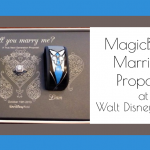 A MagicBands Marriage Proposal at Walt Disney World