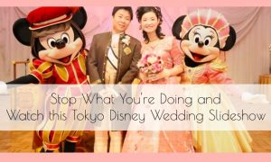 Stop What You're Doing and Watch this Tokyo Disney Wedding Slideshow