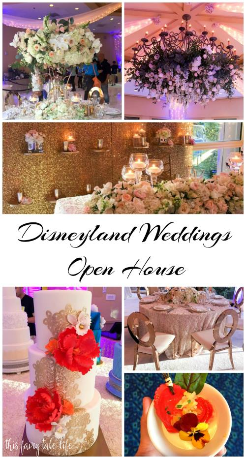 Disneyland Weddings Open House Recap