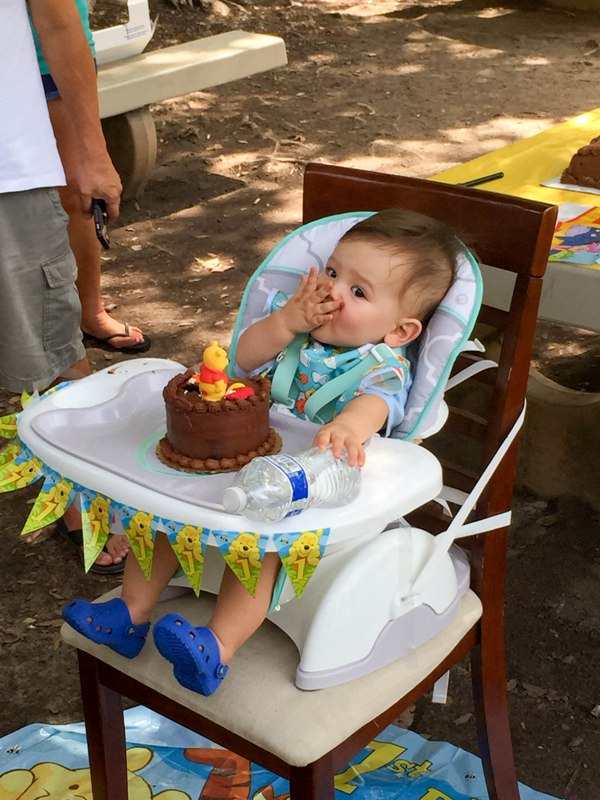 Felix's Winnie the Pooh First Birthday Party