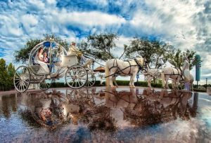 Tips for Choosing a Disney Fine Art Photographer