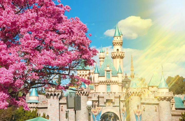 Tips for Surviving Disneyland When it's Super Hot