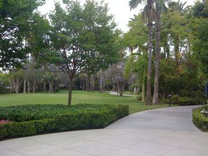 The Disneyland Hotel Adventure Lawn