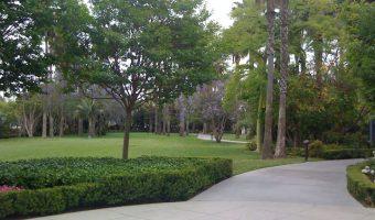 The Disneyland Hotel Adventure Lawn