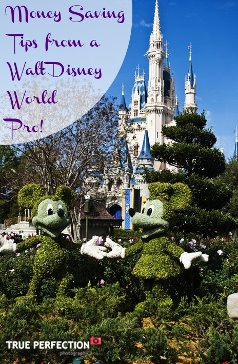 Walt Disney World Money Saving Tips from a Walt Disney World Pro!