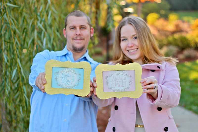 Sleeping Beauty Baby Gender Reveal Photos
