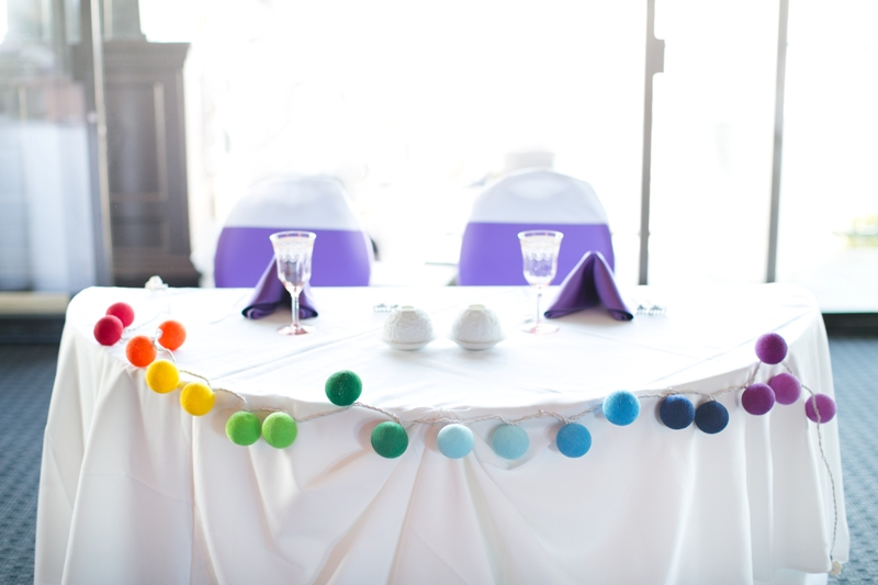 Courtney and Allen's UP Themed At-Home Disney Wedding // Chris + Jenn Photos