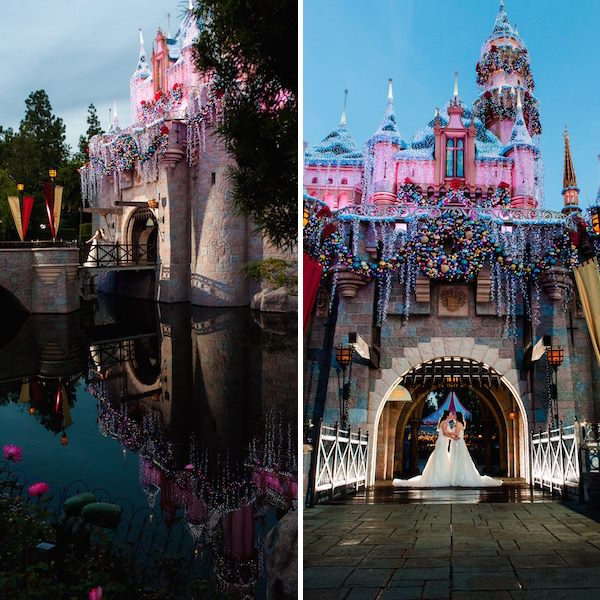 Brides, Books, And Bees: Renee And Diana's Disneyland Wedding