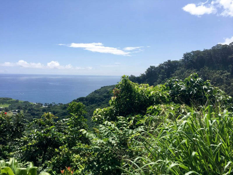 Traveling the Road to Hana with Valley Isle Excursions