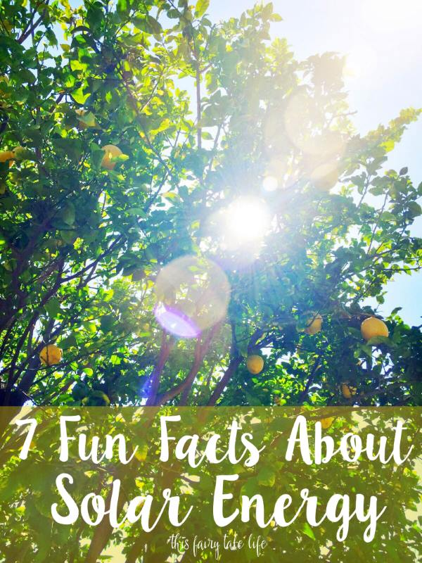 7 Facts About Solar Energy
