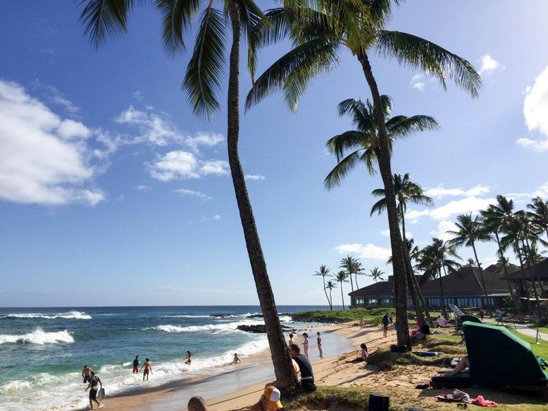 Hawaii Cruise Trip Report - Kauai