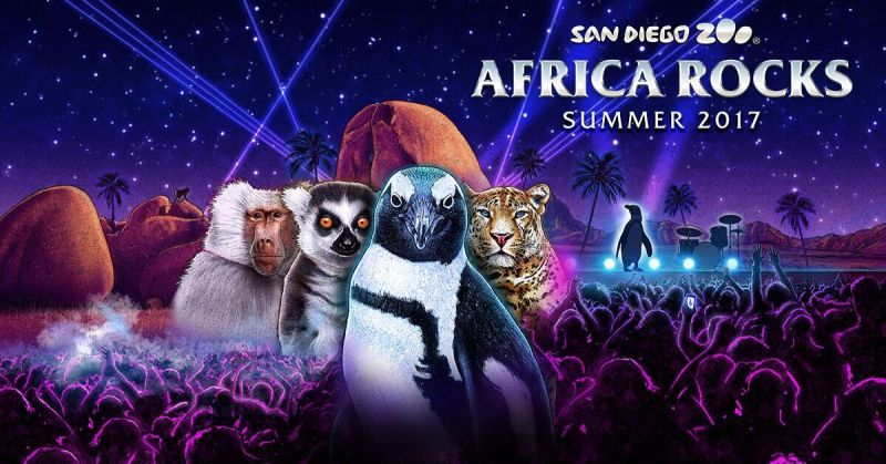 """Visit the New """"Africa Rocks"""" Exhibits at the San Diego Zoo"""