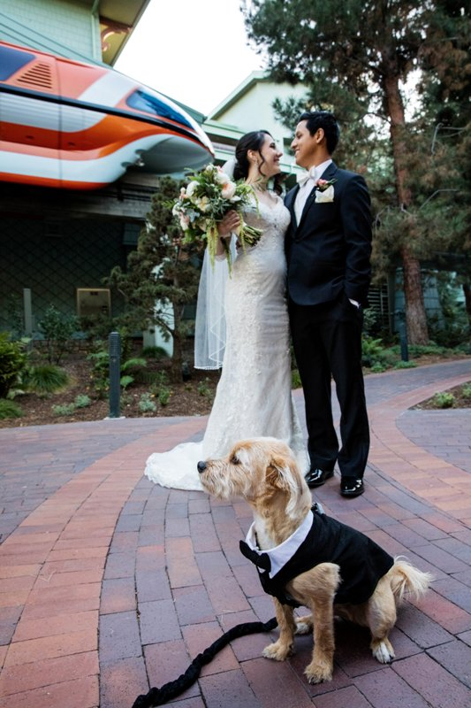 How to Include Your Dog at Your Disneyland Wedding
