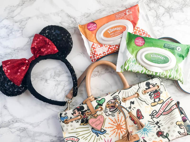8 Items Disney Foodies Should Pack in Their Bags