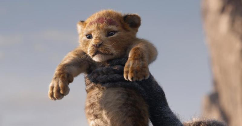 THE LION KING 2019 Movie Review - This Fairy Tale Life