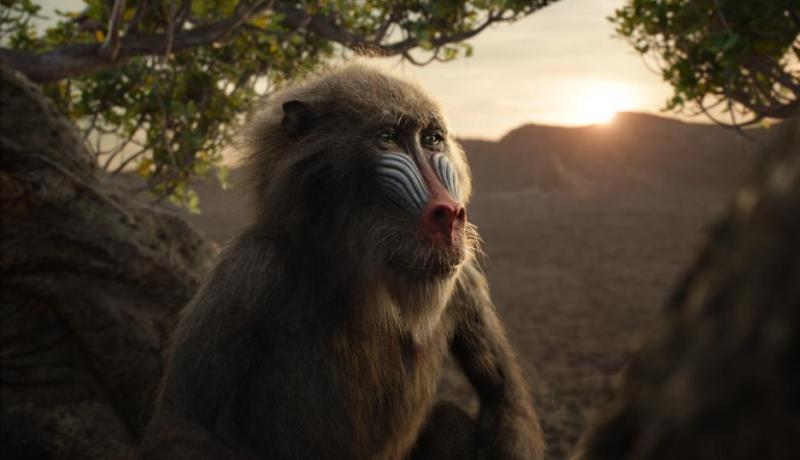 THE LION KING 2019 Movie Review