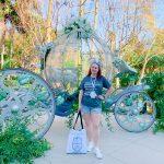 Disneyland wedding crystal carriage