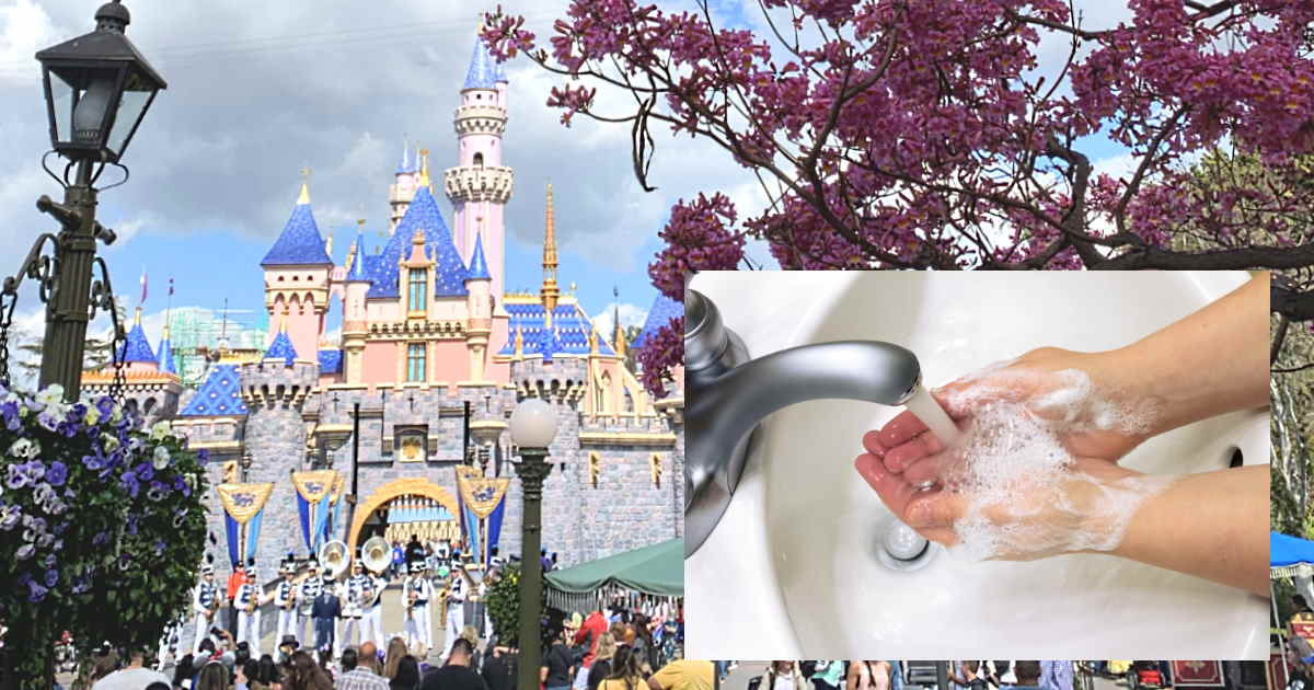 Tips for Staying Healthy While Visiting Disney
