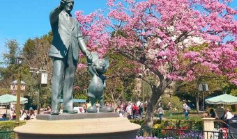 What is the Future of Disney Vacations?
